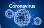 2020中小学新型冠状病毒教案