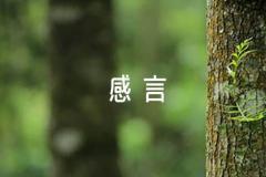 优秀党员获奖感言朋友圈【六篇】