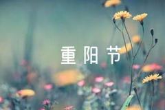 温馨重阳节祝福语范文(精选8篇)