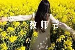 九月教师节新闻稿范文(精选11篇)